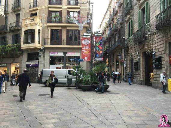 20141124-110657-BarcelonaIP6P-043